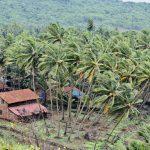 Ratnagiri Famous Tourist Spots
